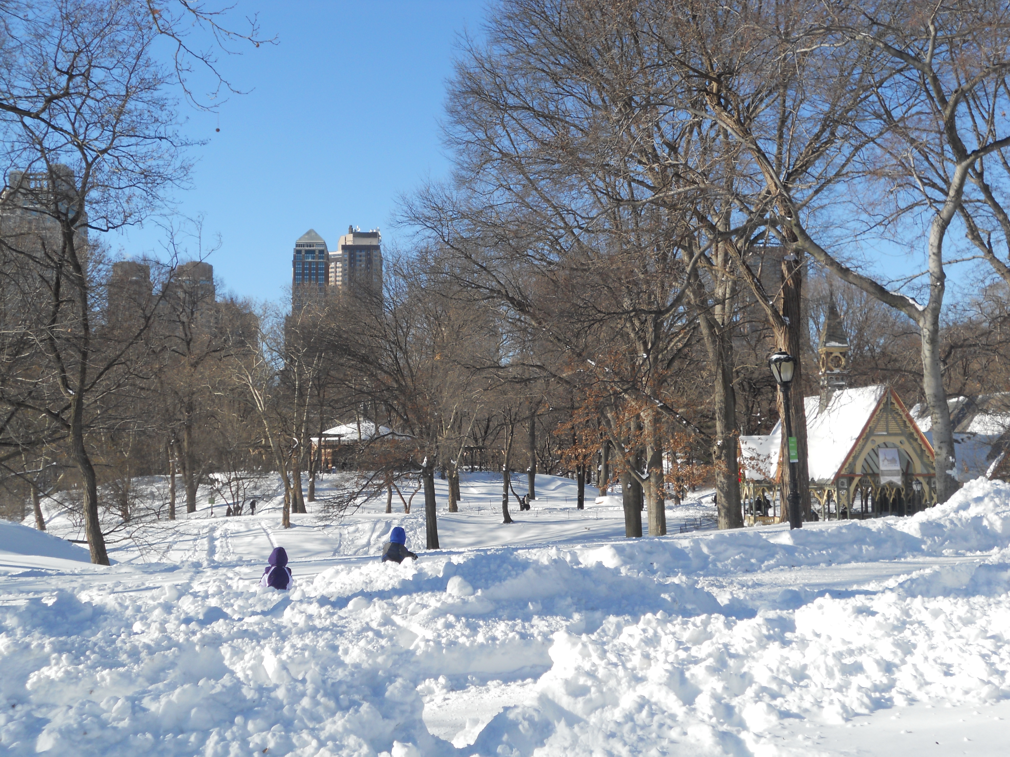2010 blizzard stranded in new york city for new year 39 s eve for Things to do in central park today